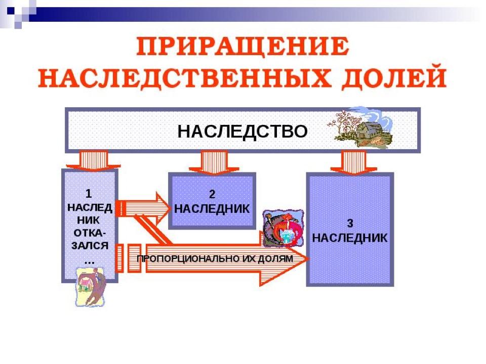 Изображение - Приращение наследственных долей допускается если img8